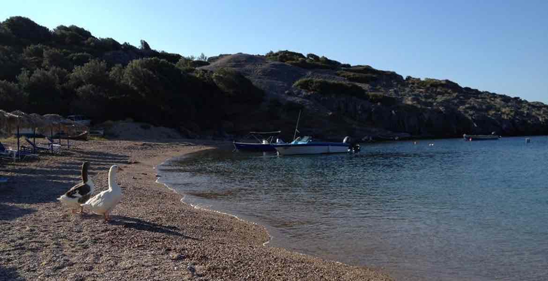 Tarti Beach, Geheimtipp auf Lesvos